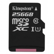 Карта памяти Kingston SDC10G2/256GB