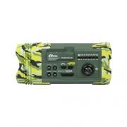 Радиоприёмник Ritmix RPR-707