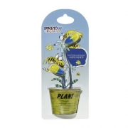 Наушники SmartBuy Plant Yellow/Blue